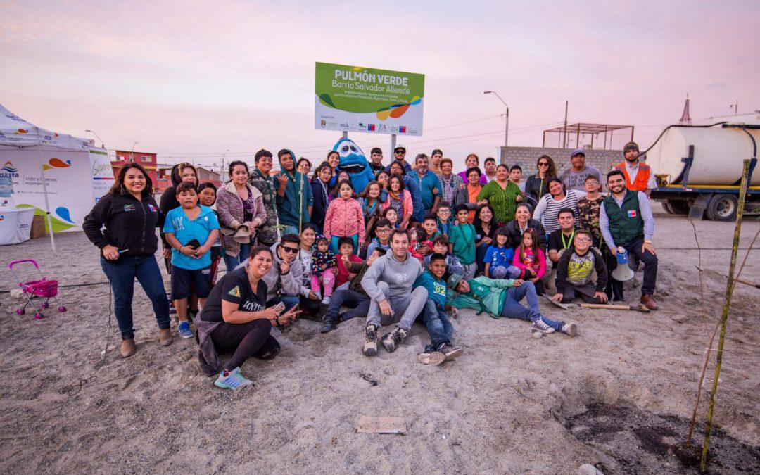 Mejillones: avanza arborización de la vía férrea